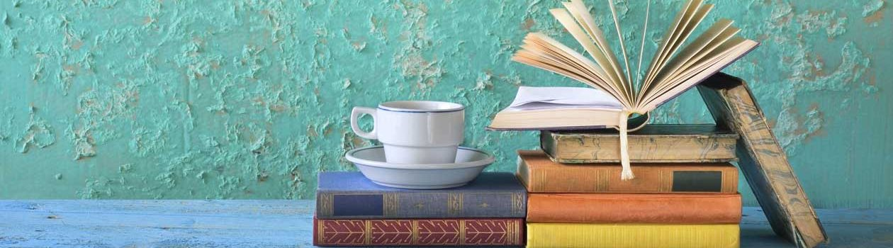 boeken van Henri van nieuwenborgh voor de ontspanning
